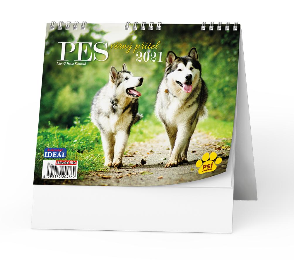Stolní kalendář - IDEÁL - Pes, věrný přítel
