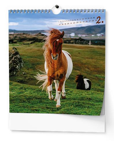 Nástěnný kalendář - IDEÁL - Koně