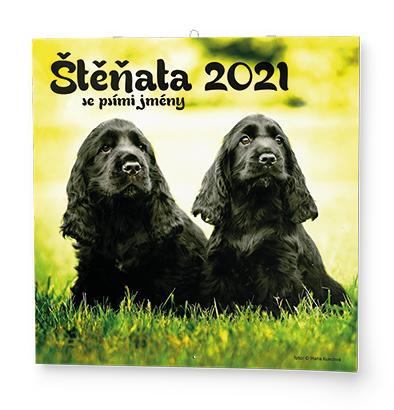 Nástěnný kalendář - Poznámkový - Štěňata, BALOUŠEK, BNL2