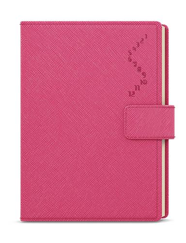 Denní diář - Ctirad - s výsekem - manager color - A5 - růžová, BALOUŠEK, BDCk28-51