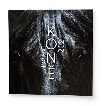 Nástěnný kalendář - Poznámkový - Koně, BALOUŠEK, BNL3