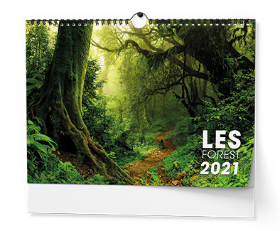 Nástěnný kalendář A3 - Les, BALOUŠEK, BNK22