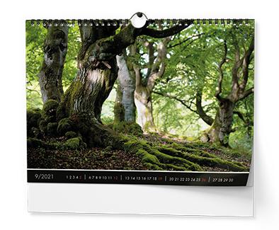 Nástěnný kalendář A3 - Les
