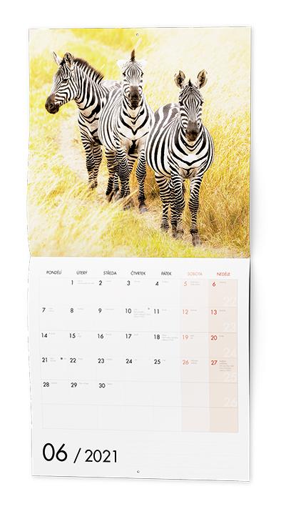 Nástěnný kalendář - Poznámkový - 1-2-3 Animals