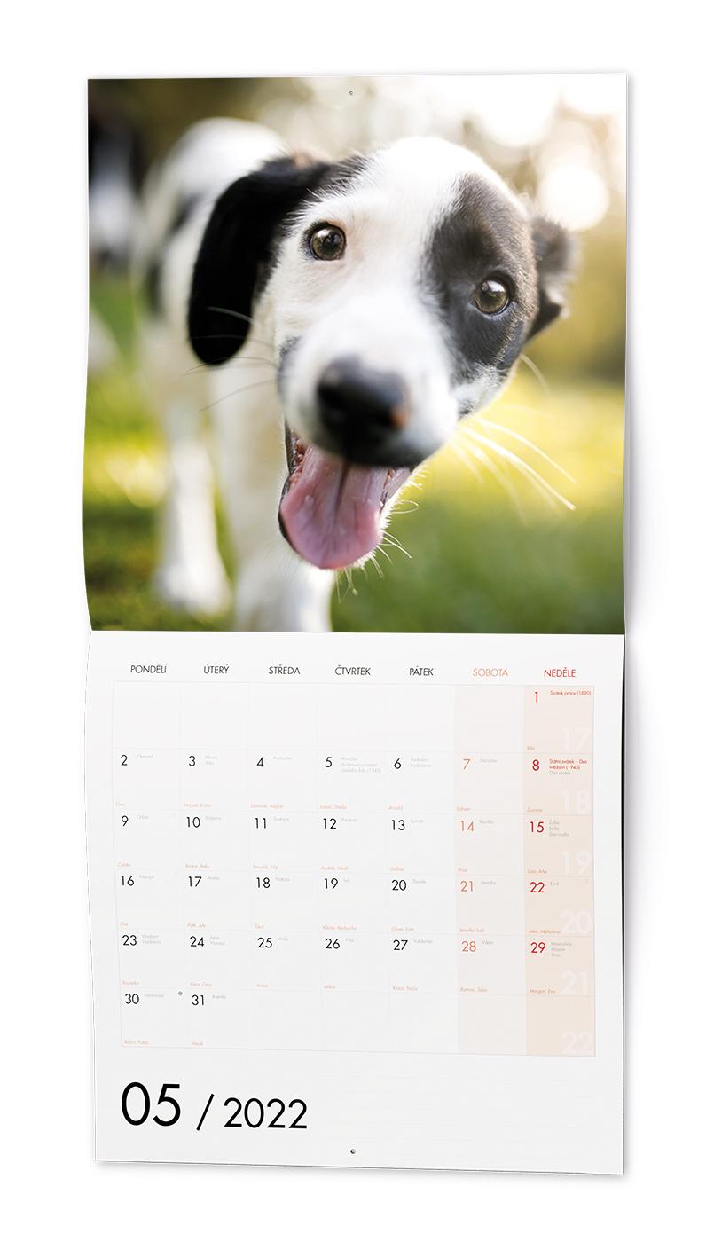 Nástěnný kalendář - Poznámkový - Štěňata