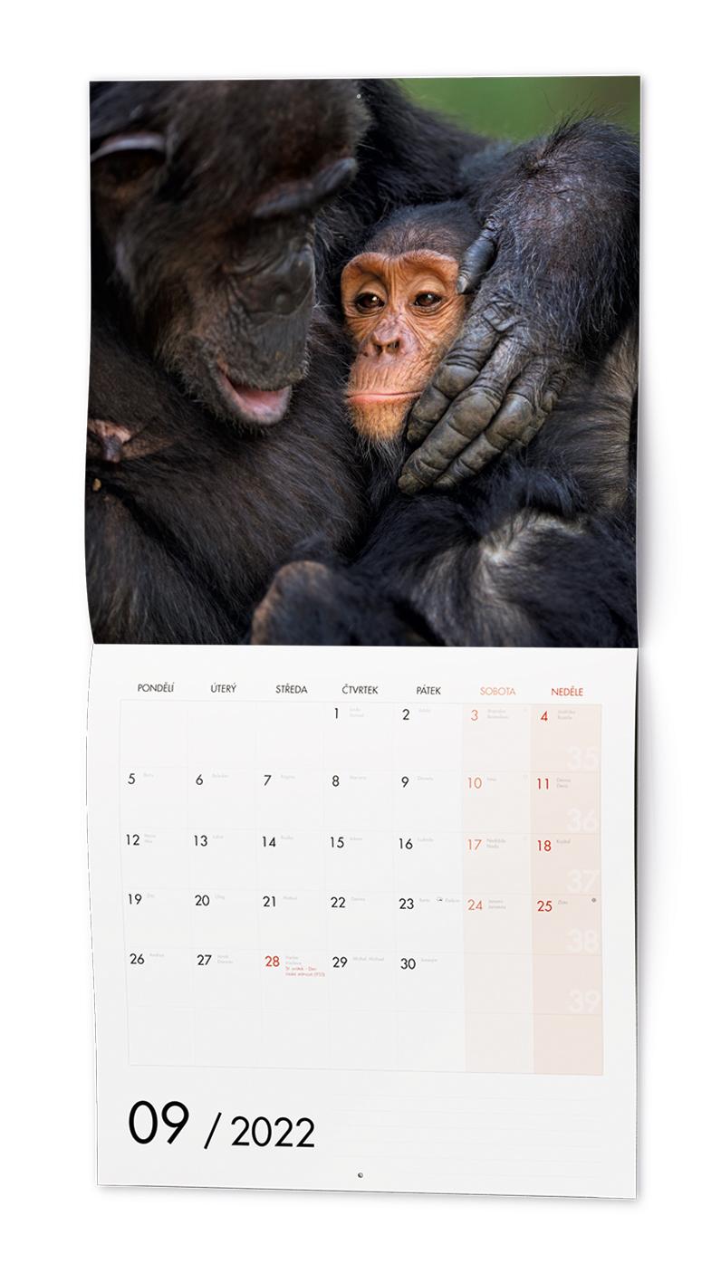Nástěnný kalendář - Poznámkový - Zvířátka